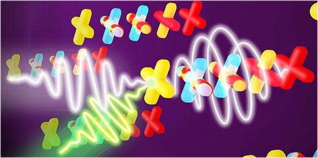 A trillion turns of light nets terahertz polarized bytes 1