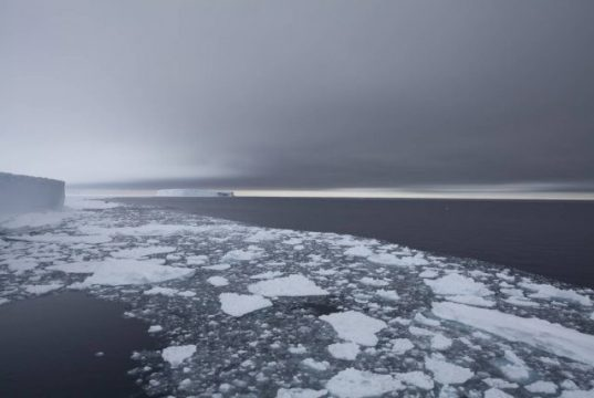 Depths of the Weddell Sea are warming five times faster than elsewhere