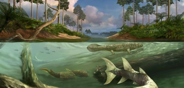 Large tides may have been a key factor in the evolution of bony fish and tetrapods