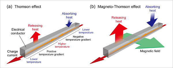 Worlds first direct observation of the magneto Thomson effect