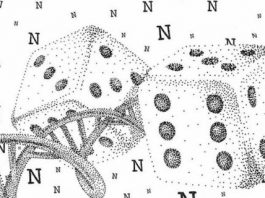 DNA molecules yield biochemical random number