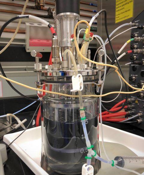 Microbe rewiring technique promises a boom in biomanufacturing