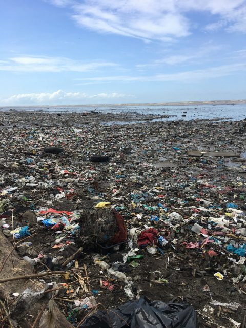 New study reveals United States a top source of plastic pollution in coastal environments