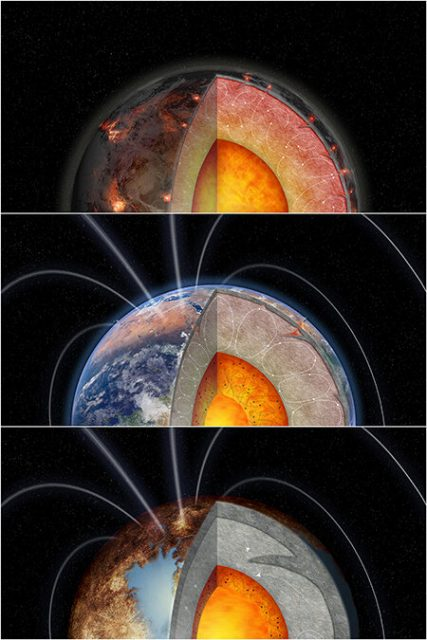 Radioactive elements may be crucial to the habitability of rocky planets