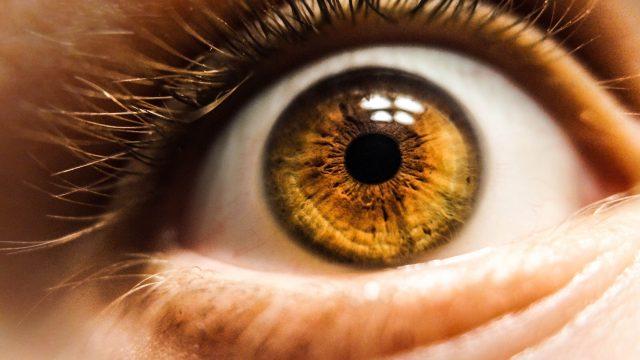 Breakthrough optical sensor mimics human eye a key step toward better artificial intelligence
