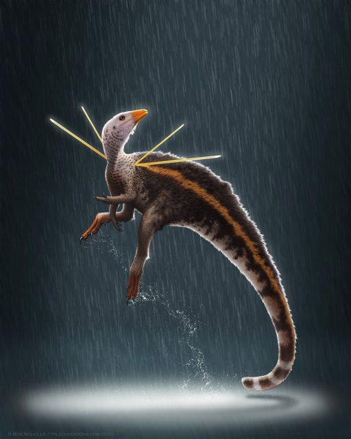 New dinosaur showed descendants how to dress to impress