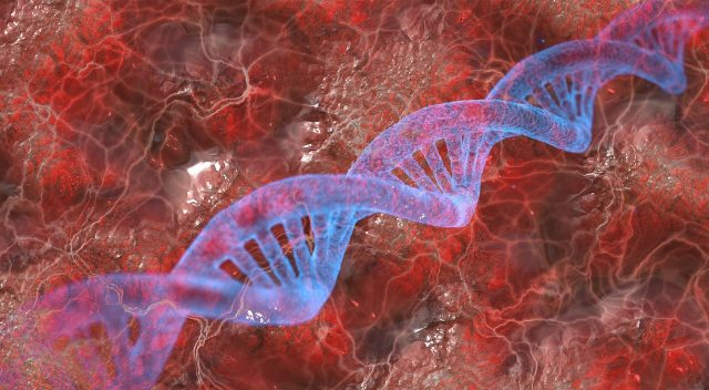 Antibiotic resistance from random DNA sequences