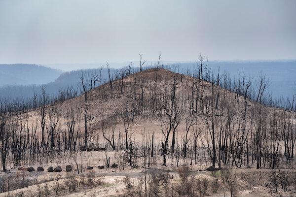 Australias Black Summer a climate wake up call