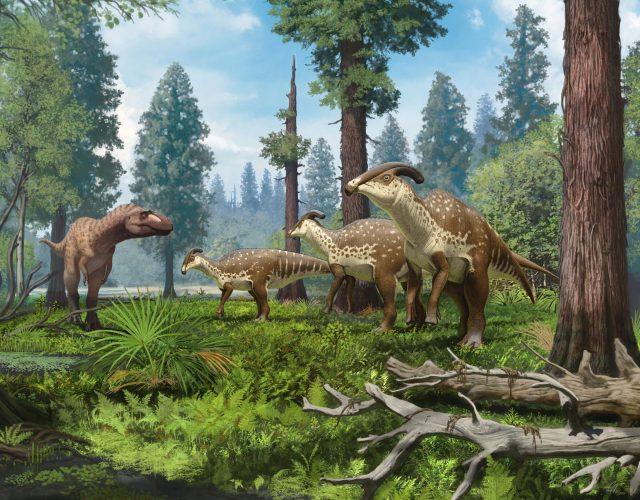 New skull of tube crested dinosaur reveals evolution of bizarre crest 1