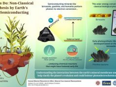 Non classical photosynthesis by earths inorganic semiconducting minerals