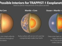 The seven rocky planets of TRAPPIST 1 seem to have very similar compositions