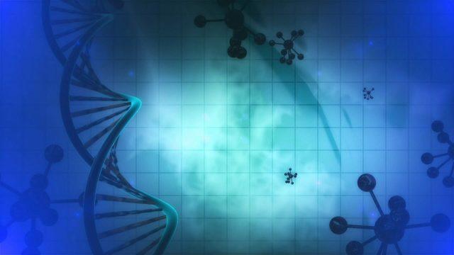 Genes that dance to the circadian rhythm