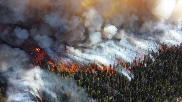 Fine particulate matter from wildfire smoke more harmful than pollution from other sources