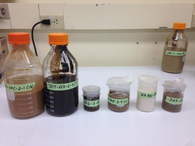 Microbes deep beneath seafloor survive on byproducts of radioactive process