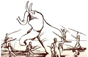 The human brain grew as a result of the extinction of large animals
