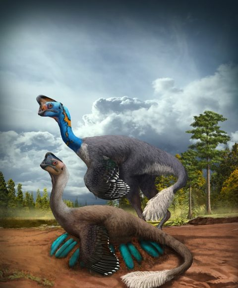 Worlds first dinosaur preserved sitting on nest of eggs with fossilized babies