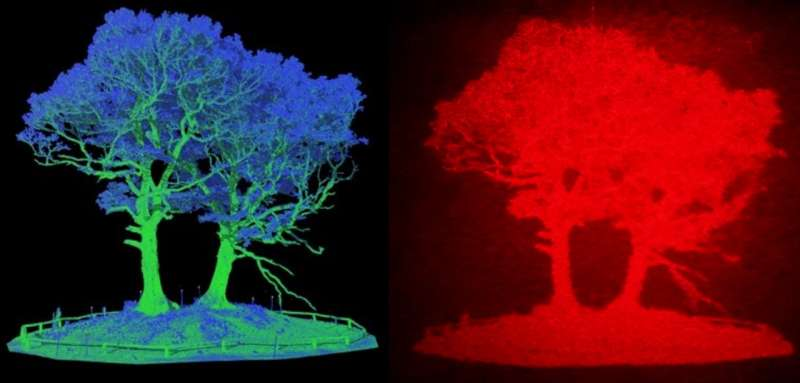 3D holographic head up display could improve road safety