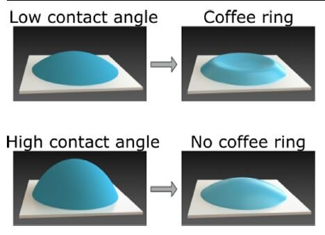 International team uncovers mystery behind coffee ring formation