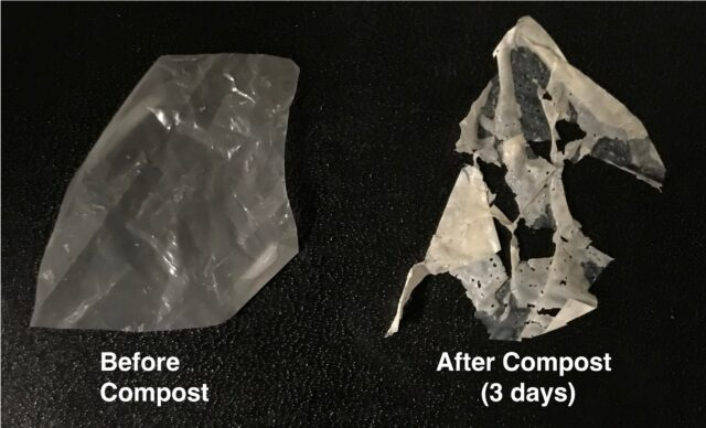 New process makes biodegradable plastics truly compostable