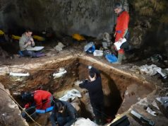 Nuclear DNA from sediments helps unlock ancient human history