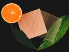 Citrus derivative makes transparent wood 100 percent renewable