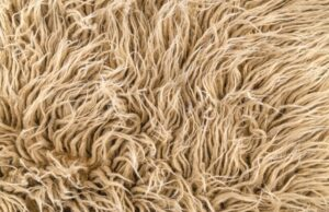 Microbially produced fibers Stronger than steel tougher than Kevlar