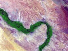 Study shows dire impacts downstream of Nile River dam